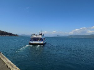 water taxi wgt